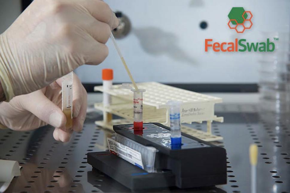 Fecal swab feces swab molecular use photo