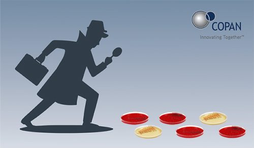 311520018780_Plate_detective_2